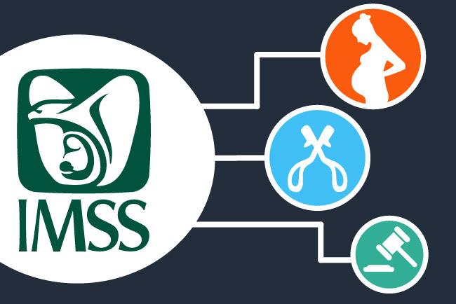 servicio-imss