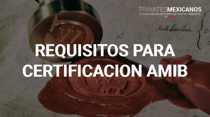 Certificado Amib