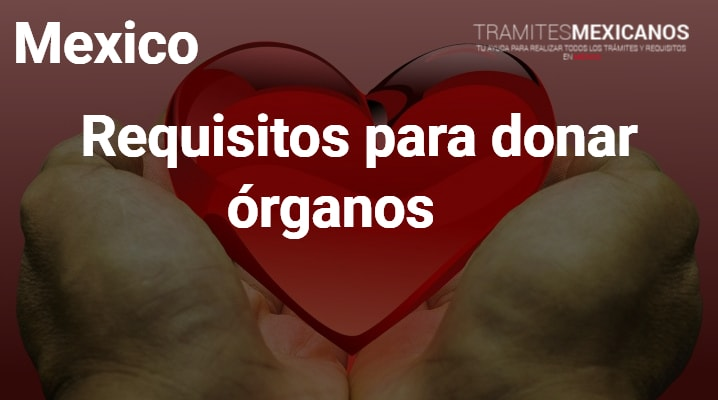 Requisitos para donar órganos