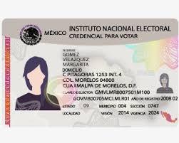 CITA INE MX