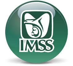 CITA MEDICA IMSS