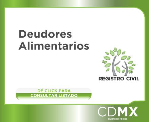 Certificado no deudor alimentario