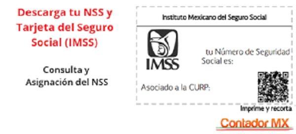 Número de crédito infonavit con mi NSS